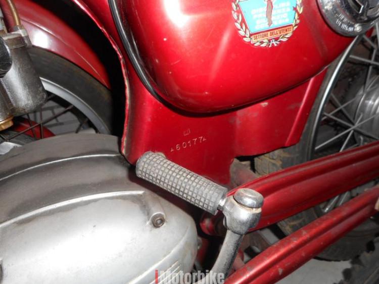 1964 Capriolo motor